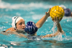 Nine Local Teams Remain In CCS Water Polo After Paly M A