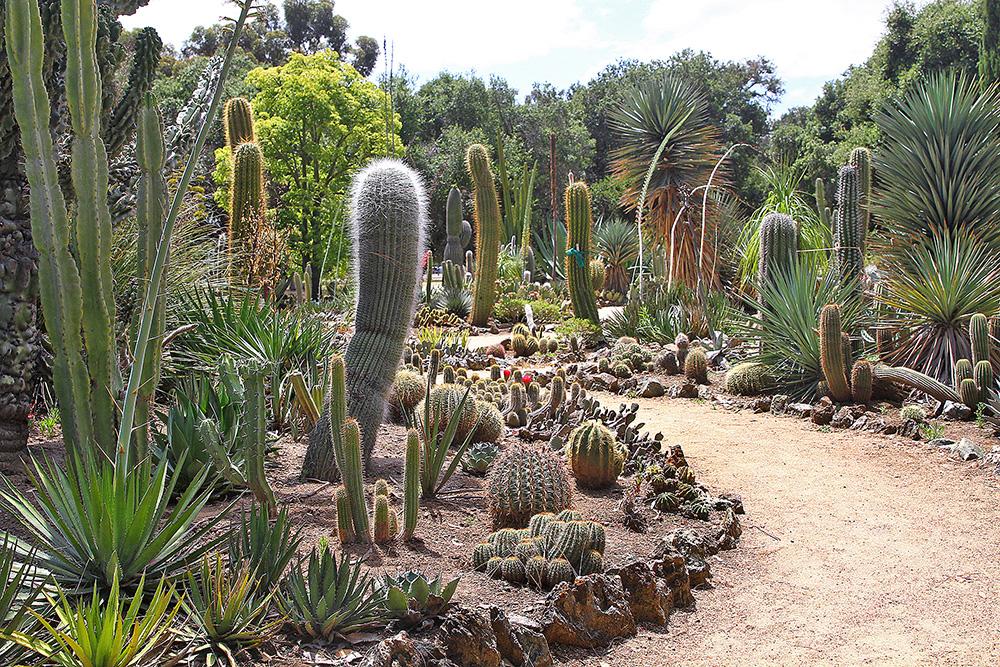 The Secret Garden News Palo Alto Online