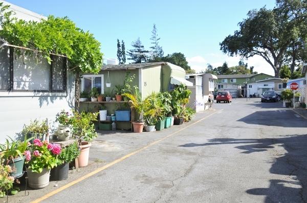 Buena Vista Mobile Home Park Palo Alto News