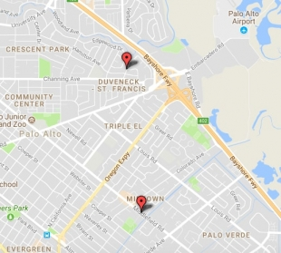 Two mountain lion sightings reported in Palo Alto News Palo Alto