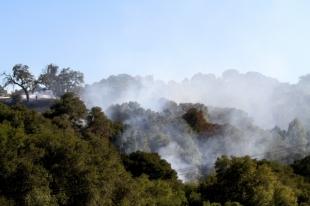 Conditions in Palo Alto area hills are ripe for wildfire