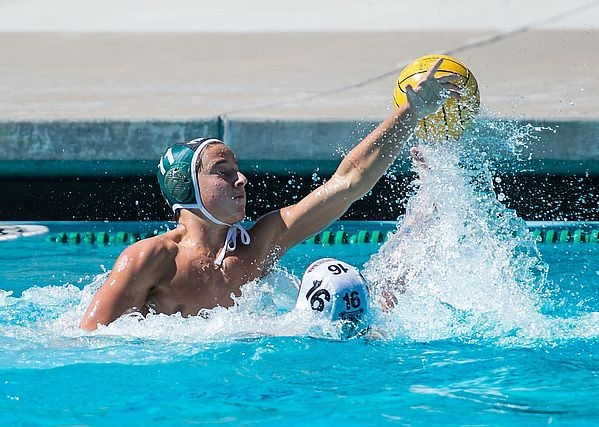 St. Francis Water Polo undefeated, best in Northern ... |Mountain View Water Polo